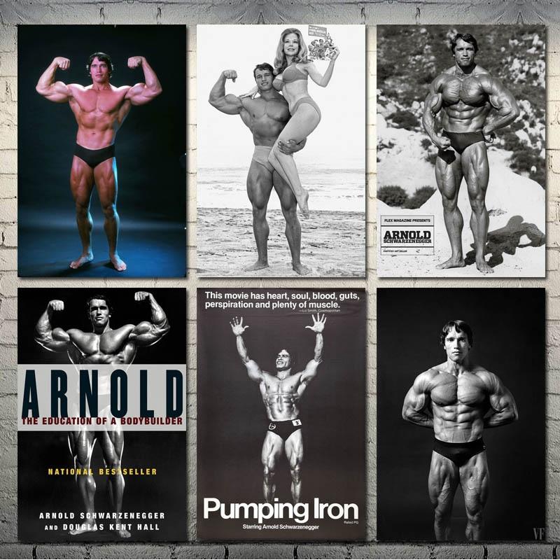 Y394 Arnold Schwarzenegger Bodybuilding Muscle Star Silk Canvas Poster 30 24x36