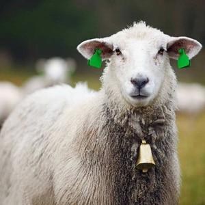 Image 5 - 1PCS Sheep Copper Bells Livestock Animal Husbandry Copper Bells Sound Loud Brass Bell Cow copper Bells Loud Crisp Farther