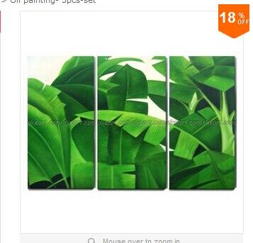Env o gratis pintado 100 plantas tropicales arbustos for Banano de jardin