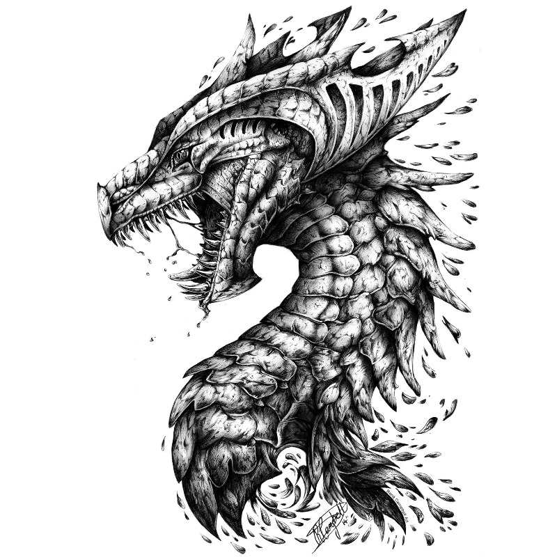 Head Teeth Dragon Scales Art Monochrome Drawing