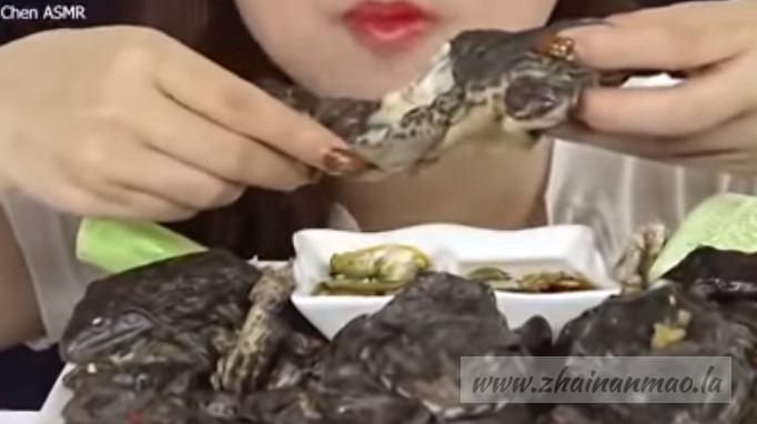 油管一越南女子生食青蛙被传疯! 酱油蟹已经out啦~