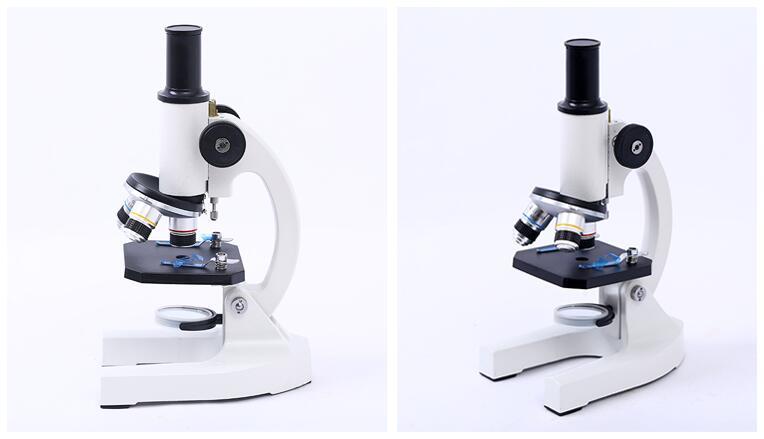 Unter dem mikroskop leben und biologie medizin wissenschaftliche