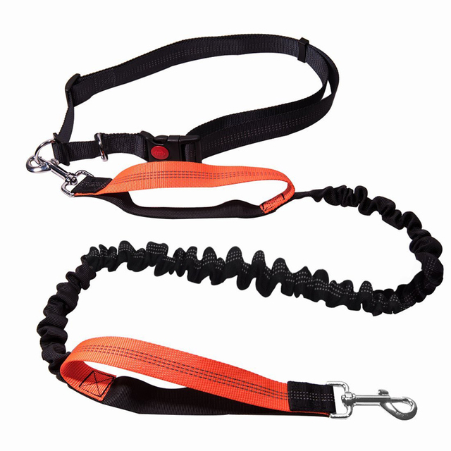[TAILUP] Dogs Leash Running Elasticity Hand Freely Pet Products Dogs Harness Collar Jogging Lead and Adjustable Waist Rope CL153 2