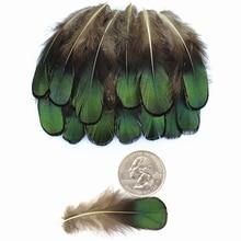 Натуральные зеленые женские бронзовые переливающиеся перья для рукоделия 5-8 см перья для изготовления ювелирных изделий перья Плюм