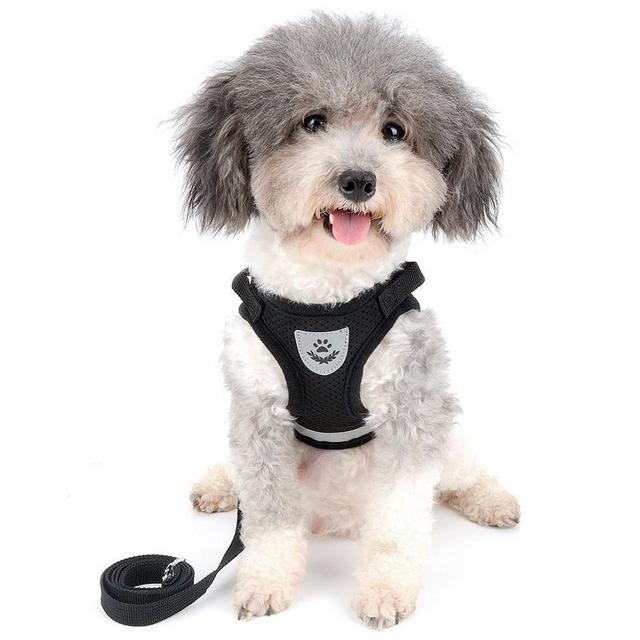 Reflective Dog Cat Harness Pet Adjustable Vest Walking 4