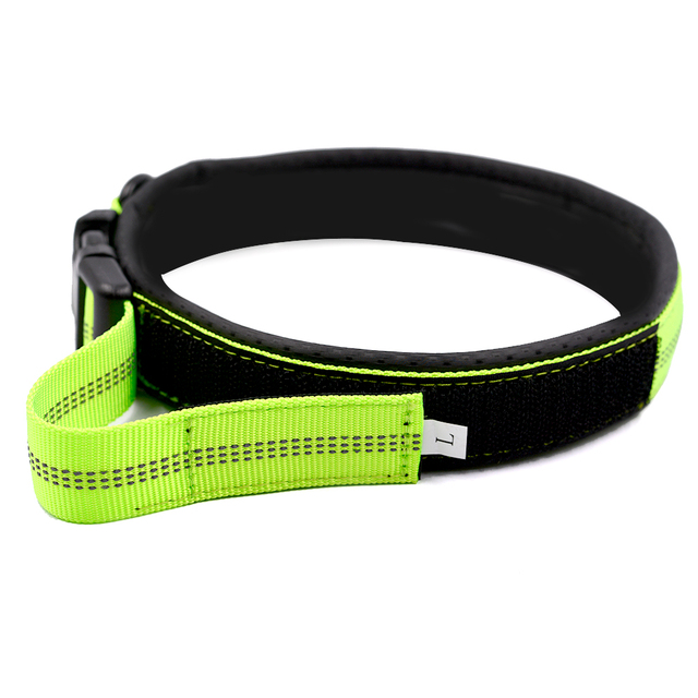 Soft  Mesh Padded Adjustable Dog Collar