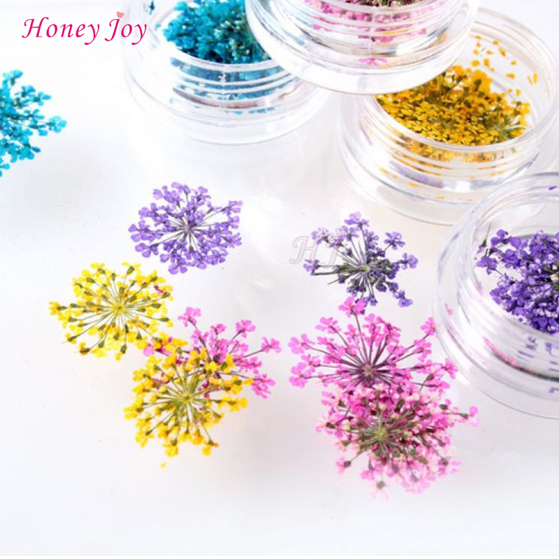 b8dd5715a4 12bottles/lot 3D Dry Flower Nail Art Decoration UV Gel Nails Stickers Nails  Manicure Tips Decals with 12 Different Colors Acrylic DIY Bottle Packing