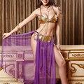 4 unids/set Mujeres Lencería Sexy de Danza Del Vientre Disfraces Cosplay Púrpura Falda De Malla Bra Set Erótico Ropa Para la Mujer Del Partido