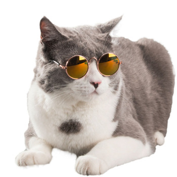 Funny Glasses for Cat & Dogs 1