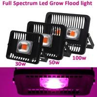 Full Spectrum Led Grow Flood Light Outdoor IP66 Waterproof High Power 30W 50W 100W 220V For