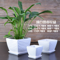 Creative Simple Meaty Flower Pot with Tray 3 Sets of Large, Medium and Small Square Flower Pots Round Pattern Flower Pot