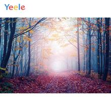 Yeele Landscape Maple Leaves Forest Grunge Decor Photography Backdrops Personalized Photographic Backgrounds For Photo Studio