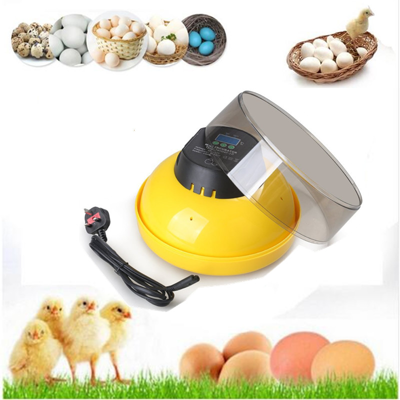 Home use digital temperature control eggs hatchers chicken ducks quail egg hatching machine chinese incubator free ship to au new sale home automatic egg incubator 56 eggs chicken incubator brooder quail eggs incubators