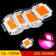 Высокая мощность 10-100 Вт полный спектр светодиодный светильник бусины 380-840nm интегрированные растительные огни полная ленточная лампа бусины