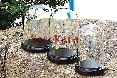 80x120mm Vintage Glass Dome Bell Jar With Dark Wooden Base Window Display80x120mm Vintage Glass Dome Bell Jar With Dark Wooden Base Window Display