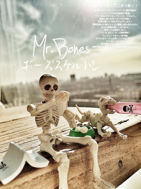 Cute Fashion design Mr. Bones Pose Skeleton human skeleton