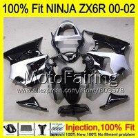 8Gifts Injection mold Body For KAWASAKI NINJA ZX 6R 00 02 INJ183 ZX 6R ZX6R 00 01 02 ZX636 2000 2001 2002 Fairing silver black