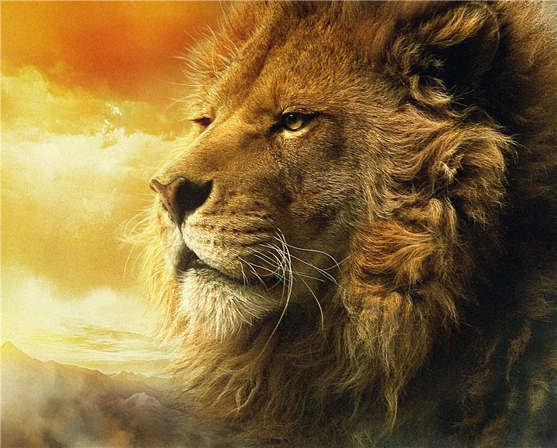 Doprava zdarma! Čerstvý vzhled zlatého lva Moderní nástěnná malba dekorativní umělecká malba na plátně