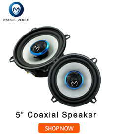 Cheap speakers for car