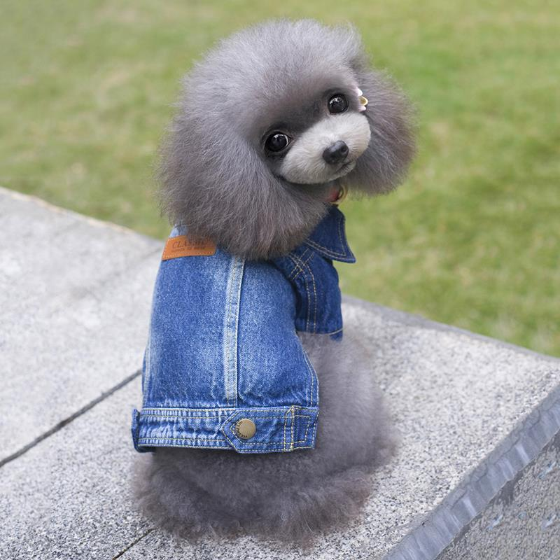 Popular Male Puppy Clothes-Buy Cheap Male Puppy Clothes ...