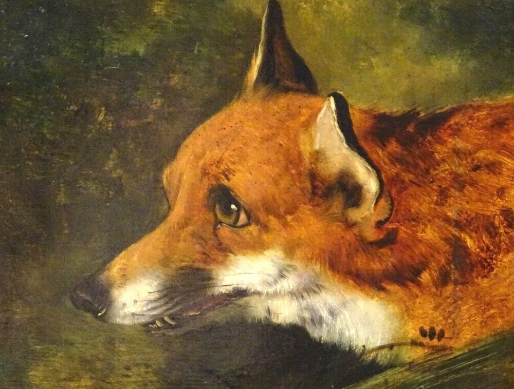 Fine 19th Century English School Portrait Of A Fox S Head Edwin Henry Landseer Hand Painted Oil Painting Free Shipping Painting Calligraphy Aliexpress