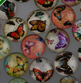 12mm round glass cabochon butterfly  pictures mixed pattern fit cameo base setting for jewelry embellishment flatback 50pcs/lot