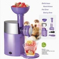 Fruit Ice Cream Machine Milkshake Machine