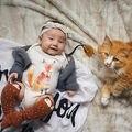Crianças Do Bebê Da Menina do Menino Roupas Fox Sunsuit Bodysuit Macacão Verão Outfits