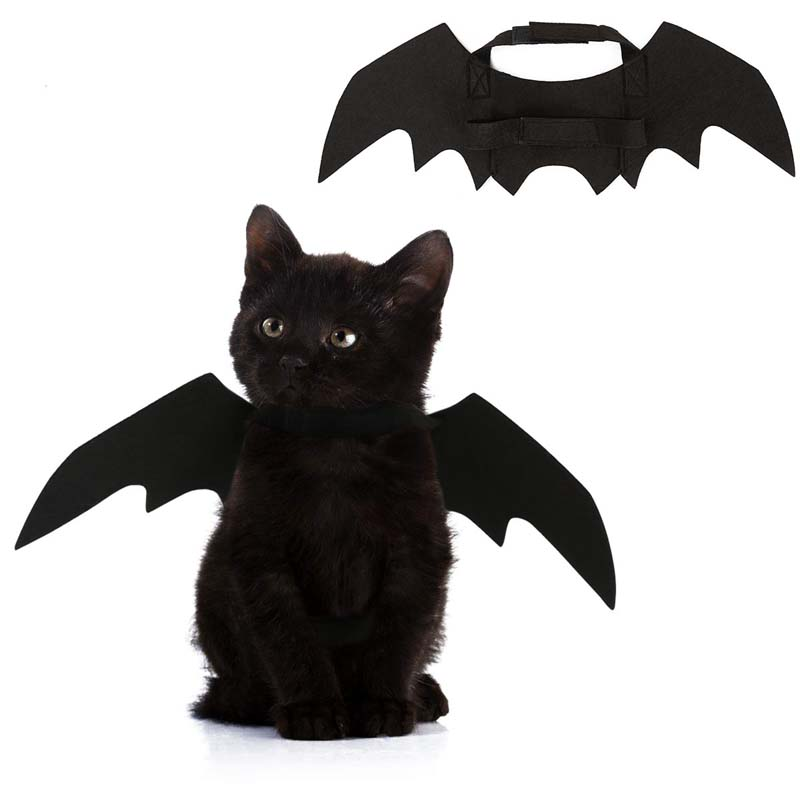 Newest Creative Pet Halloween Costume Cat Dog Black Bat Wings Cool Puppy Cat Black Bats Dress Up Costume Pet Holiday Decoration