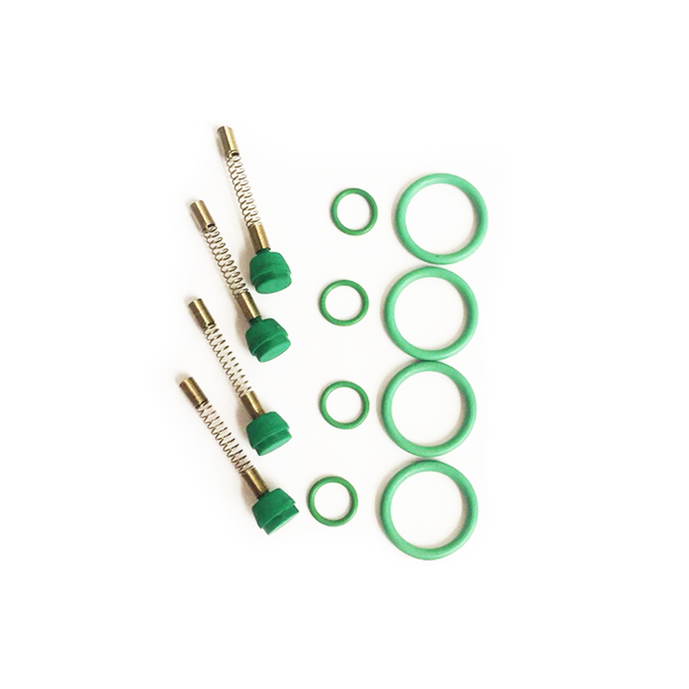 LPG CNG kits for Injector rail spring Spool Apron New Elysee NT401 original car Injector rail repair kit accessoriesLPG CNG kits for Injector rail spring Spool Apron New Elysee NT401 original car Injector rail repair kit accessories