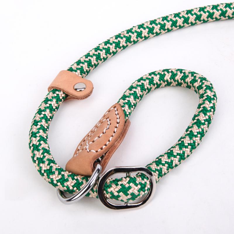 dog leash 6