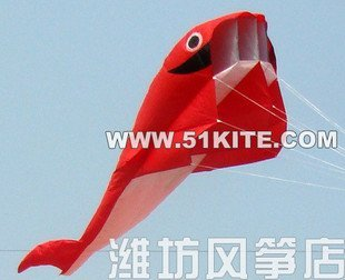 2.1 M 3D HUGE Parafoil Whale Kite, Amazing Gift/2011