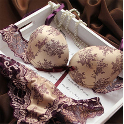 Brand new 2016 french romantic brand lace bra sets sexy women underwear set push up bc.jpg 250x250