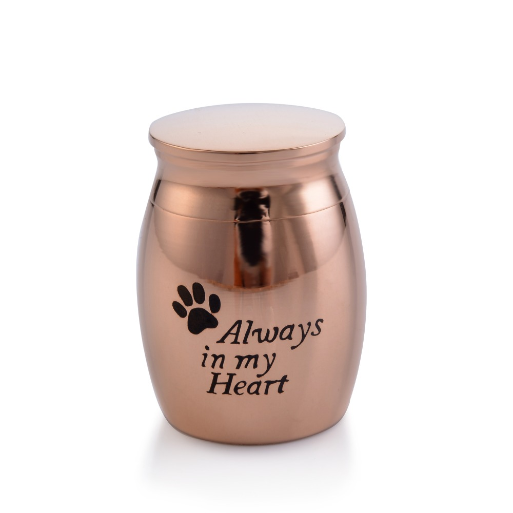 US $5 0 |Small Decorative Memorial Keepsake Cremation Urns Jar For Human  Pet Ashes Waterproof Stainless Steel Pendant Always in My Heart-in Chain