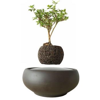 Pot de fleur bonsaï flottant Couche bonsaï arbre jardin lévitation 1