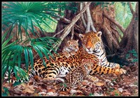 Needlework For Embroidery DIY DMC High Quality Counted Cross Stitch Kits 14 Ct Oil Painting Leopard