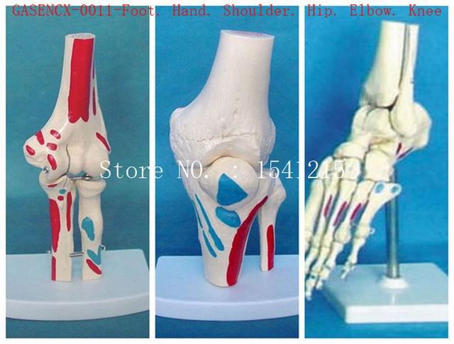 Foot. Hand. Shoulder. Hip. Elbow. Knee Altogether total are 6 partes ...