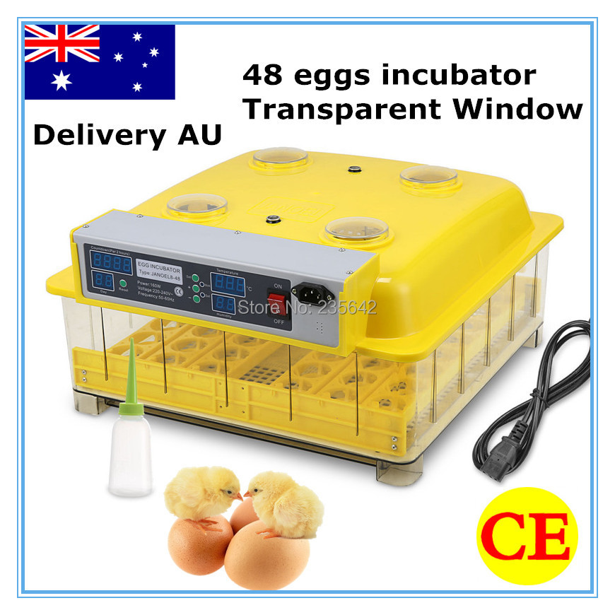 Newest 48 eggs high quality  jn8-48 egg incubator used for poultry chicken hatching high quality holding 60 chicken eggs manual jn2 60 mini egg incubator high hatching rate