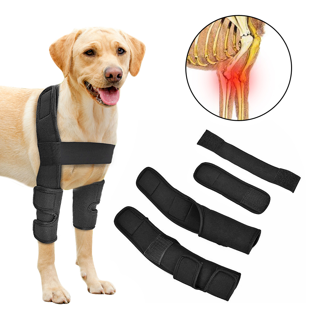 Knee Brace For Dogs Dog Wounds Heal Band Canine Rear Leg Forelegs Ankle Safety Joint Wrap Protector Prevent Arthritis Injury