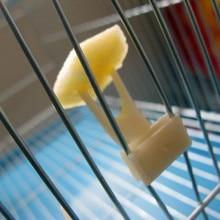 2 шт Птицы попугаи фрукты вилка товары для домашних животных пластиковый держатель еды Кормление на клетке товары для домашних животных