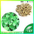 500mg x 100pcs New Arrival Ginkgo/ Gingko biloba Leaf Extract Capsule with free shipping