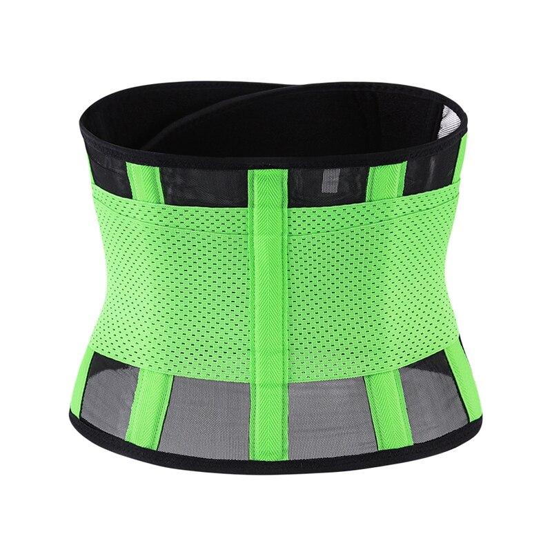 waist belt (24)