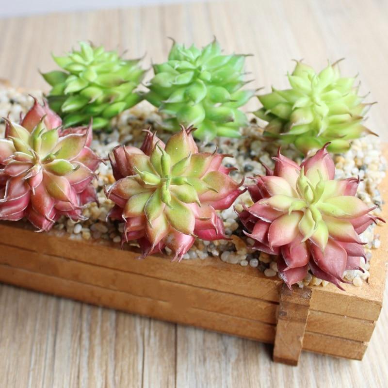 1 PCS Mini Succulent Echeveria Rare Lithops Bonsai Flower Indoor plant For Home Grden Decoration flowers artificial
