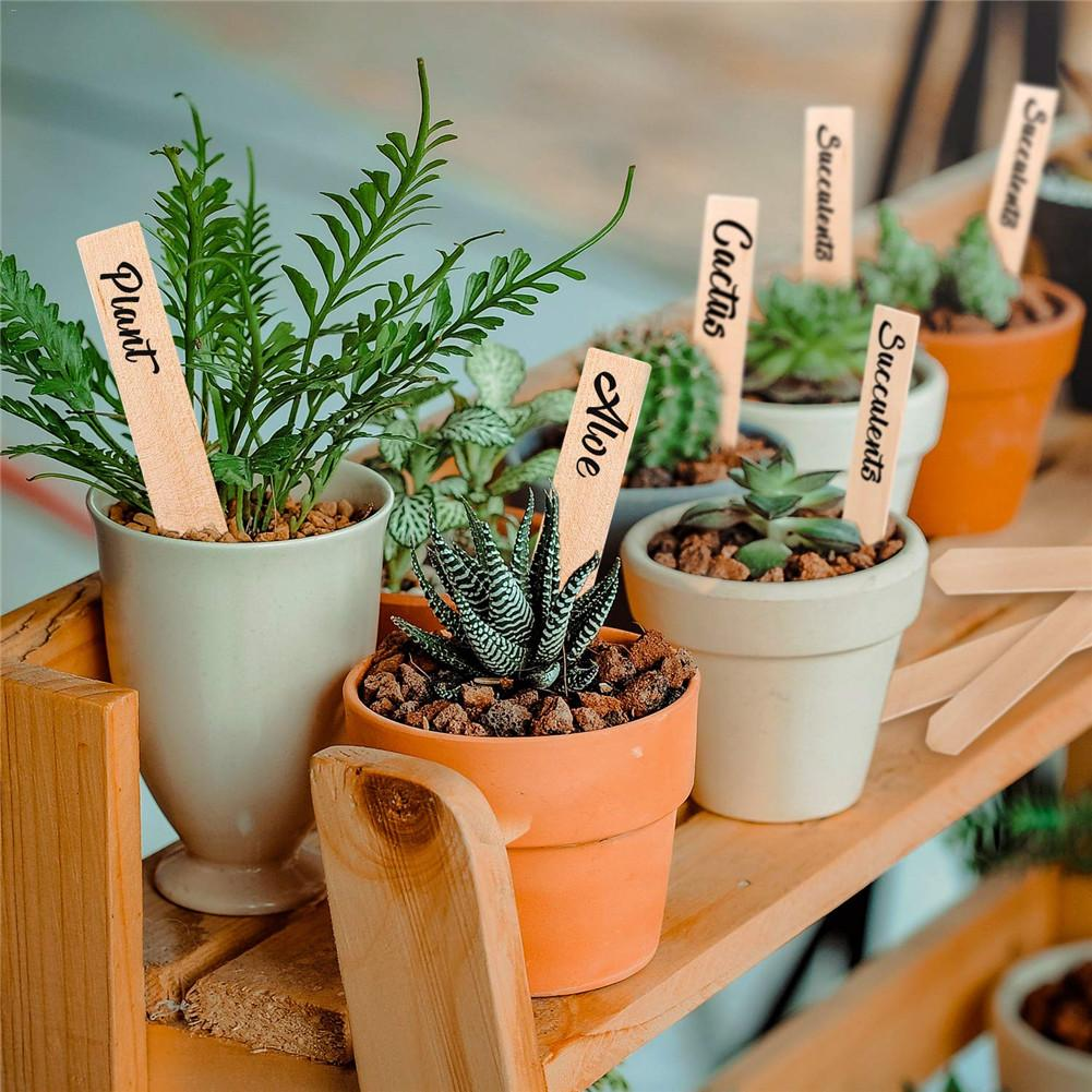 50PCS Garden Labels Wooden Plant Stake For Labelling Flower Plant Signs Gardening Card Flowerpot Tag Garden Supplies