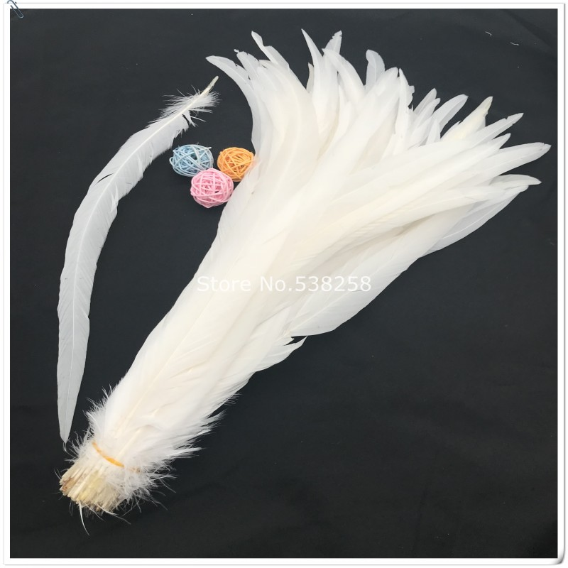 rooster feathers 30 35cm natural pure white color badger saddle for craft dancer decoration plumages in Feather from Home Garden
