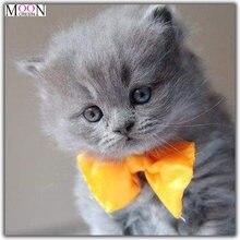 Mooncresin diy алмазная живопись вышивка крестиком Милая кошка