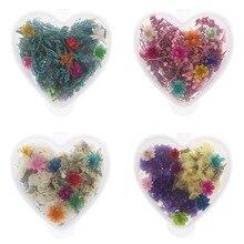 Сушеные цветы для украшения ногтей сохраненный цветок с коробкой в форме сердца DIY