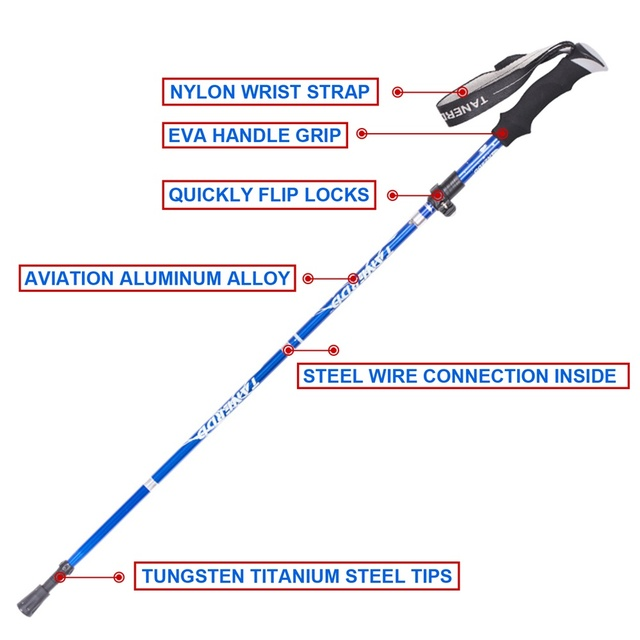 EVA Handle 4-Section Adjustable Walking Sticks 2