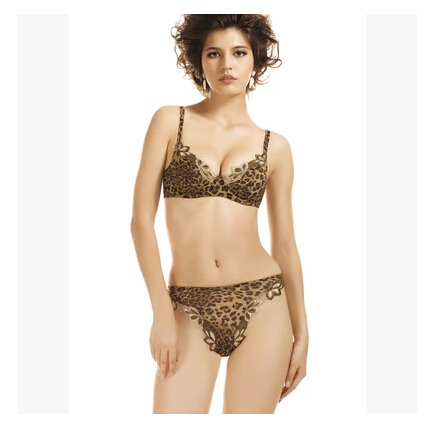 Sexy leopard print bra set underwear luxury Embroidery deep v-neck push up intimates bra and panty set for women BS226