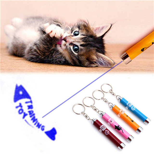 LED Laser Pointed Light Pen Cat Toy